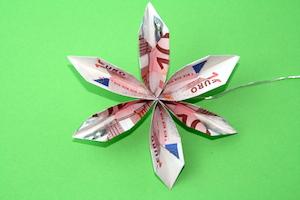 Anleitung für eine Blume aus Geldscheinen